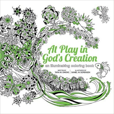 Book Review: AT Play in God's Creation found on Daily Graces at dailygraces.net