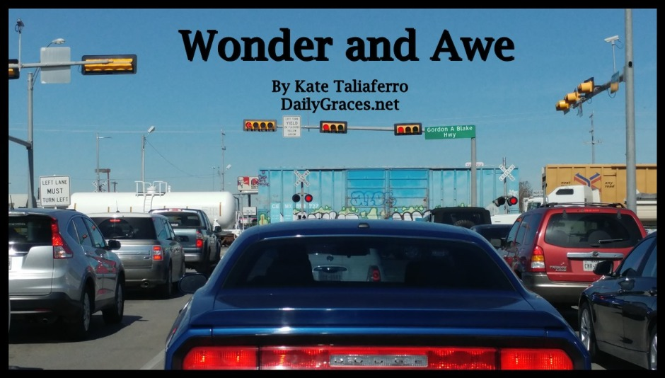 Wonder and Awe by DailyGraces.net
